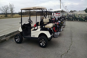 Gas & Electric Golf Carts, Tennessee