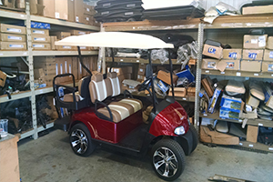 Gas & Electric Golf Carts