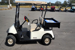 Gas & Electric Golf Carts, Brentwood, TN